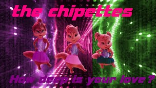 The chipettes - How deep is your love? (music lyric video)