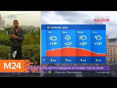 """""""Утро"""": температура воздуха составит +22 градуса днем во вторник - Москва 24"""