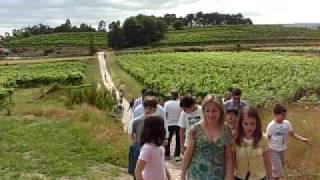 A Caminho da Capela - Quinta de Campos de Lima (EVAG)