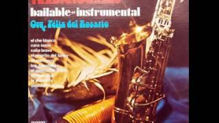 Félix del Rosario - Caña Brava (1974)