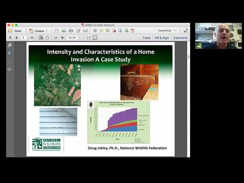 Learn about BMSB and the Latest IPM Techniques