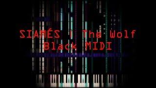 [Black MIDI] SIAMÉS   The Wolf