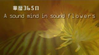 Deep breathing 華暦146  2015・4・25  Creature system / いきものがかり