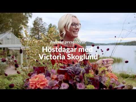 Höstdagar med Victoria Skoglund ⎪1