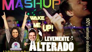 DjDani Fortunato - Mashup - Wake me up/Avicii + Levemente alterado/Michel Teló