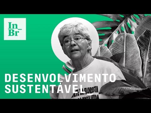 Como funcionam os PDS de Dorothy Stang na Amazônia – assentamentos sustentáveis estão sob ataque