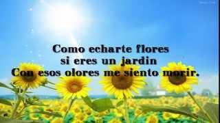 Aterciopelados - Florecita Rockera con letra