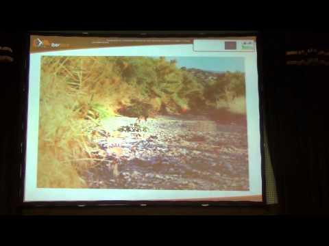 Imagen resumen del vídeo perteneciente al canal Olipe