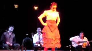 Delengua Spanish courses in Spain. Live flamenco