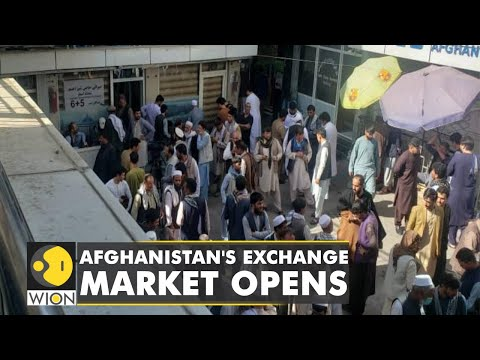 Major money exchange market opens in Afghanistan | Latest World English News | WION News