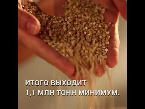 Дефицита продуктов не будет: гречка