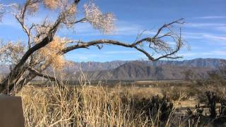 Relaxing music with beautiful scenes of desert