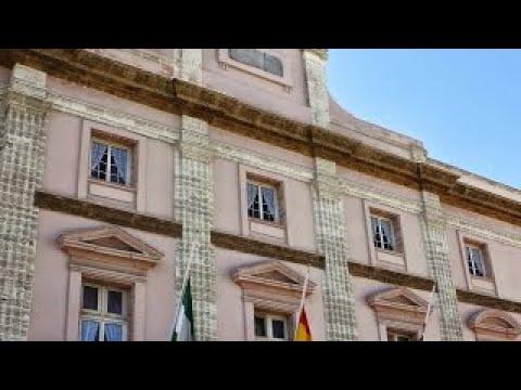 Pleno Telemático Diputación Cádiz – Noviembre 2020