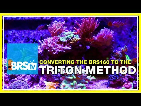 Update 4: Changing over to the Triton Method. | 52 Weeks of Reefing #BRS160