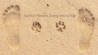Xulon Press book His Mercy, My Grace | Roses