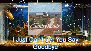 I Just Can't Let You Say Goodbye   Willie Nelson
