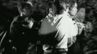 Punk Rock Show - Rosemary