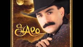 Si yo fuera ladron - El Chapo De Sinaloa