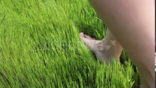 Woman Walking Barefoot on the Grass