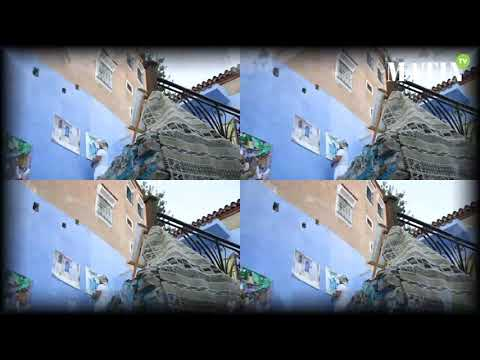 Video : Chefchaouen, le secret de la ville bleue