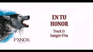 En tu Honor - Panda (Letra) HD