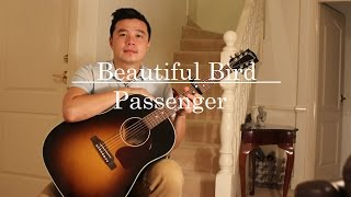 Beautiful Bird - Passenger (Alan Tang Music Acoustic Cover)