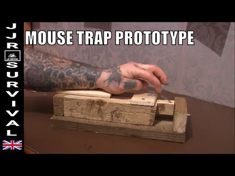 Mouse trap prototype