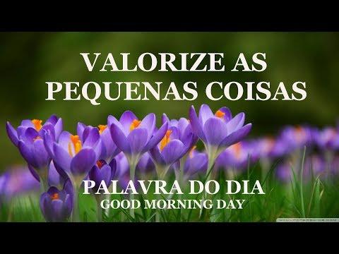 VALORIZE AS PEQUENAS COISAS - PALAVRA DO DIA - MENSAGEM DE BOM DIA REFLEXÃO DE VIDA GOOD MORNING DAY
