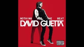 David Guetta - Turn Me On (Audio)
