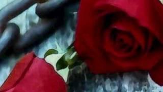 O vendedor de flores