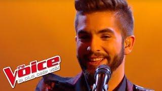 The Voice 2014│Kendji Girac - Amor de mis amores et Volare (Gipsy King)│Finales   S3
