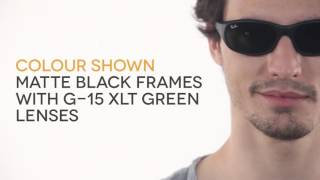 69ec7aac43e Ray-Ban RB2016 Daddy-O II W2578 Sunglasses in Black ...
