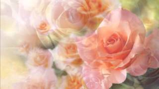 DONNY & MARIE OSMOND Paper Roses Cover YouTube