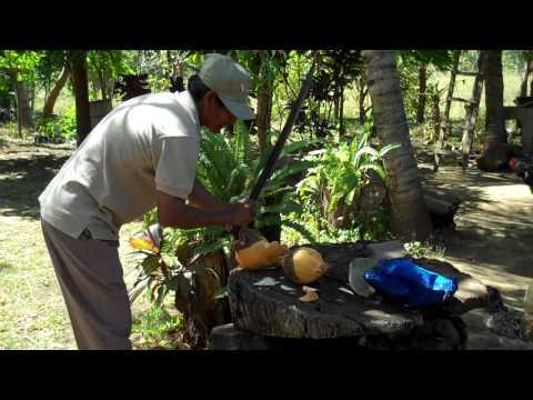 Cutting Coconut Nicaragua.MP4