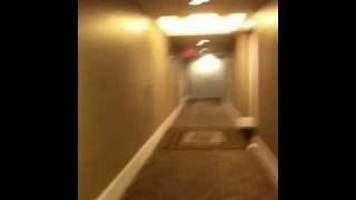 Las Vegas Hotel Orgy noises
