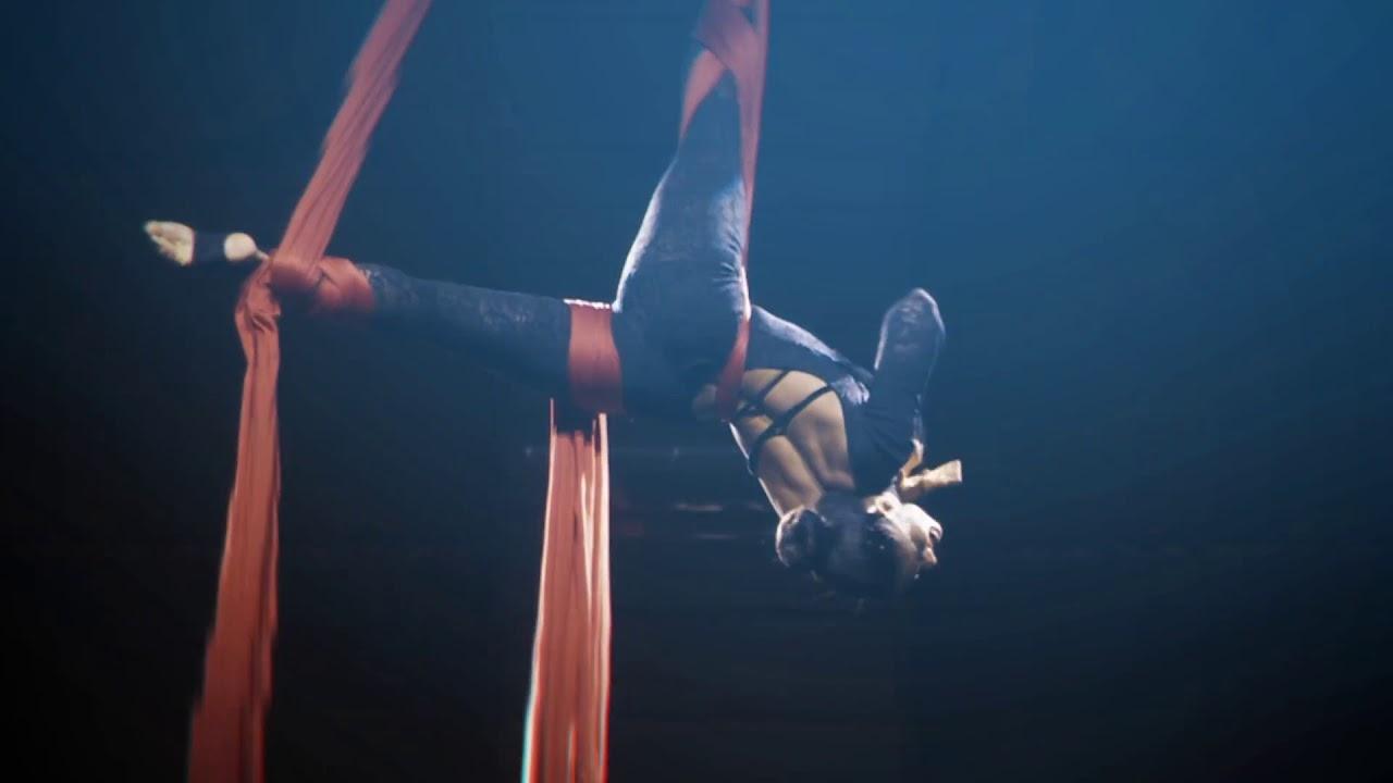 Arial Silks Dancer