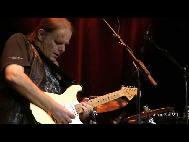 Video en directo de Walter Trout Blues for my baby