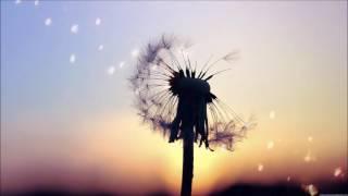 Killigrew - Dandelion Dreams