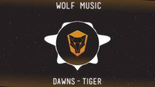 Dawns-Tiger