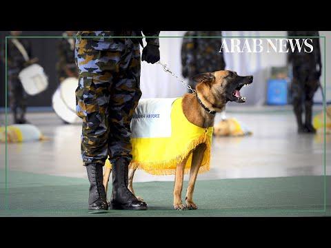 Sri Lankan Air Force 'Air Dog' unit graduates
