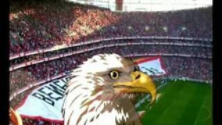 Iran Costa - Benfica vai pegar