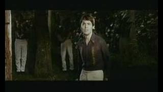 Raphael - Gris - El amor es triste