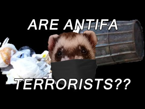 Are ANTIFA Terrorists??? A Response To Fox, Ben Shapiro, And More