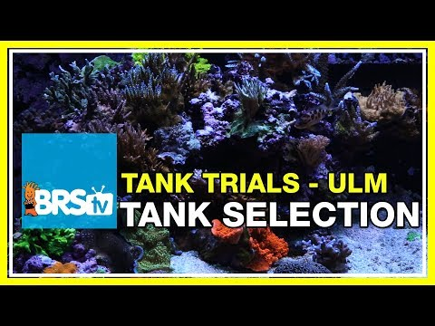 ULM Tank Trials Ep-2: Tank Selection for Ultra Low Maintenance | BRStv
