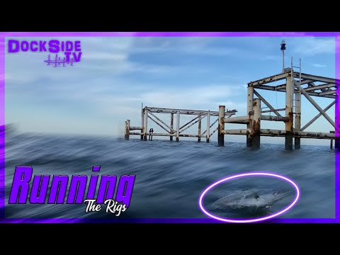 DockSide TV 'Running the Rigs'