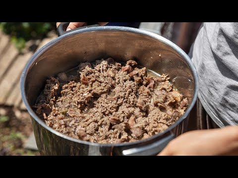 3 Things To Know Before Switching to Homemade Dog Food