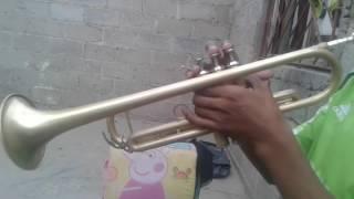 Los Piojos Trompeta (COMO ALI)