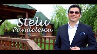 Stelu Pandelescu - Ce-o fi cu muierea mea ( Oficial Video ) 2017