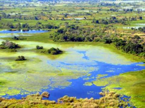 Flying Over Botswana and the Okavango Delta