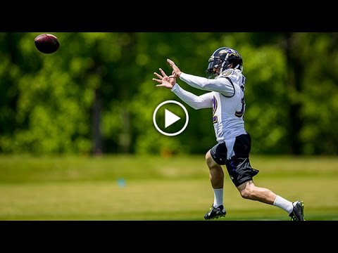 First Look: Eric Weddle Practice Highlights   Baltimore Ravens
